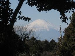 鎌倉 (4).jpg